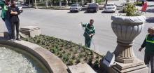 کاشت گلدان